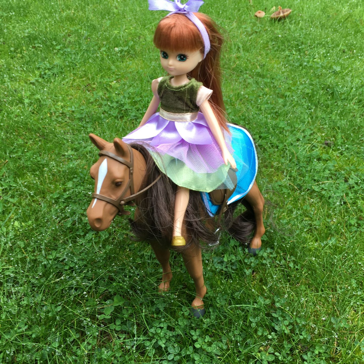 Lottie doll and pony